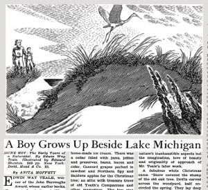 "Anita Moffett, ""A Boy Grows Up Beside Lake Michigan,"" New York Times, November 7, 1943, BR10, accessed http://timesmachine.nytimes.com"