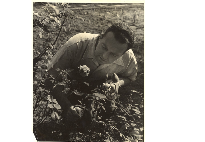 Edwin Way Teale (studying insects), photograph, 1935, Teale Papers University of Connecticut, Archives and Special Collections, accessed http://digitalcollections.uconn.edu/islandora/object/20002%3A860118213