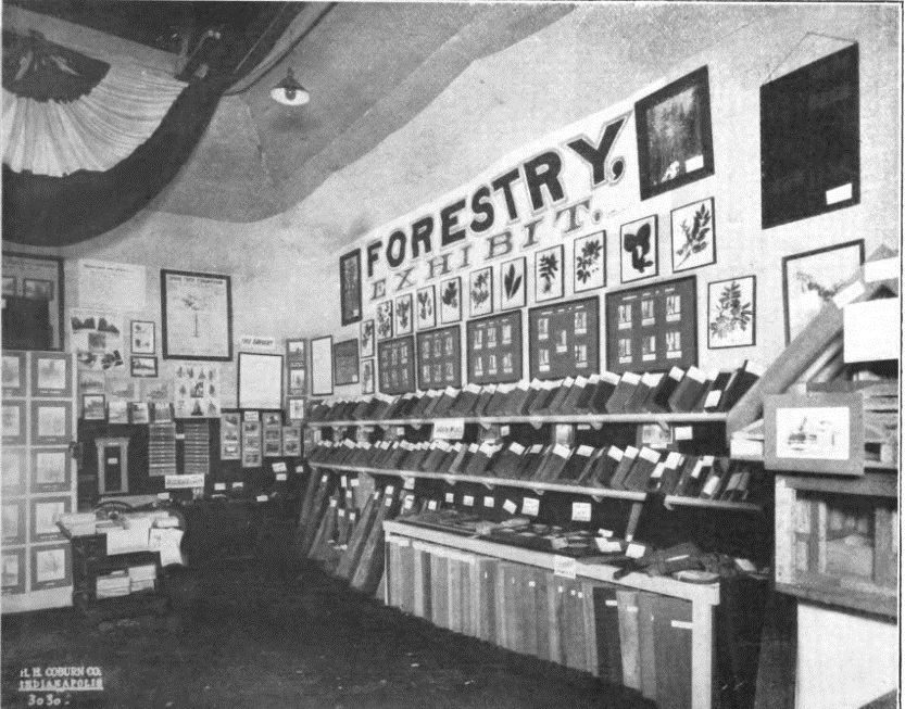 photo-7_forestry-exhibit-in-state-fair-sept-8-12-1913